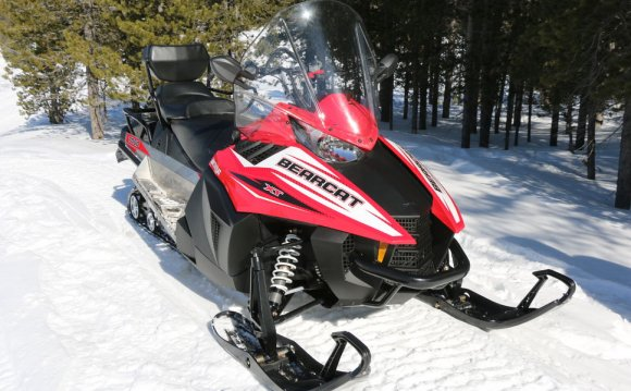 Arctic Cat Купить